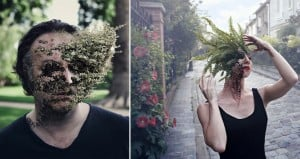photographer cal redback plant heads