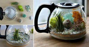 Reuse Coffee Pot