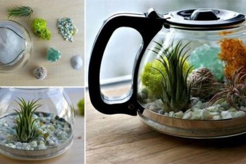 Reuse Coffee Pot