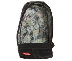 Stashed Money Backpack