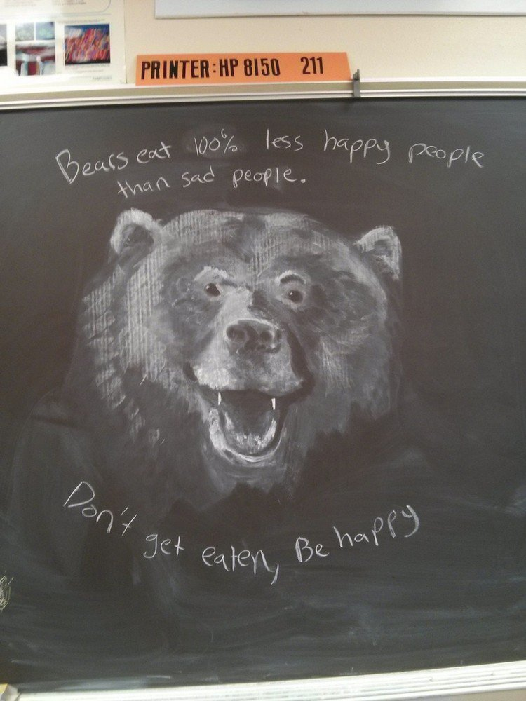 bear chalked picture