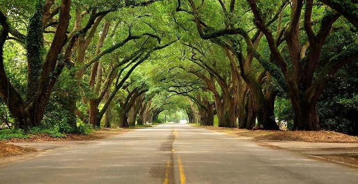 beautiful-streets-aiken