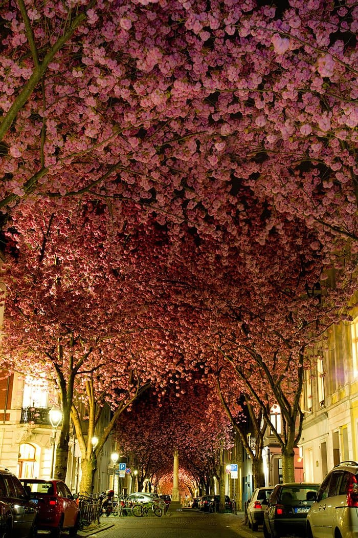 beautiful-streets-bonn-germany