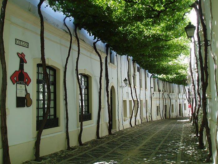 beautiful-streets-jerez