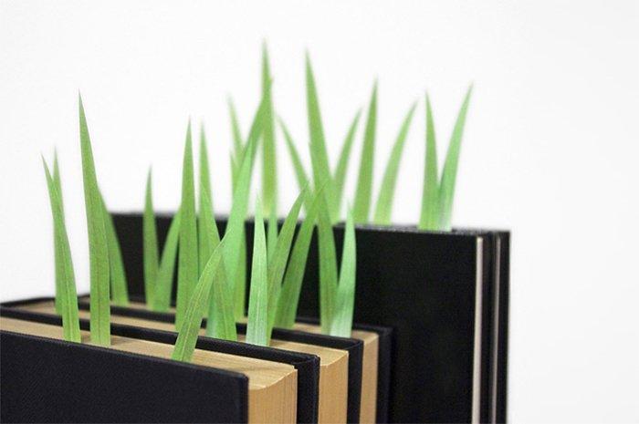 bookmarks-grass