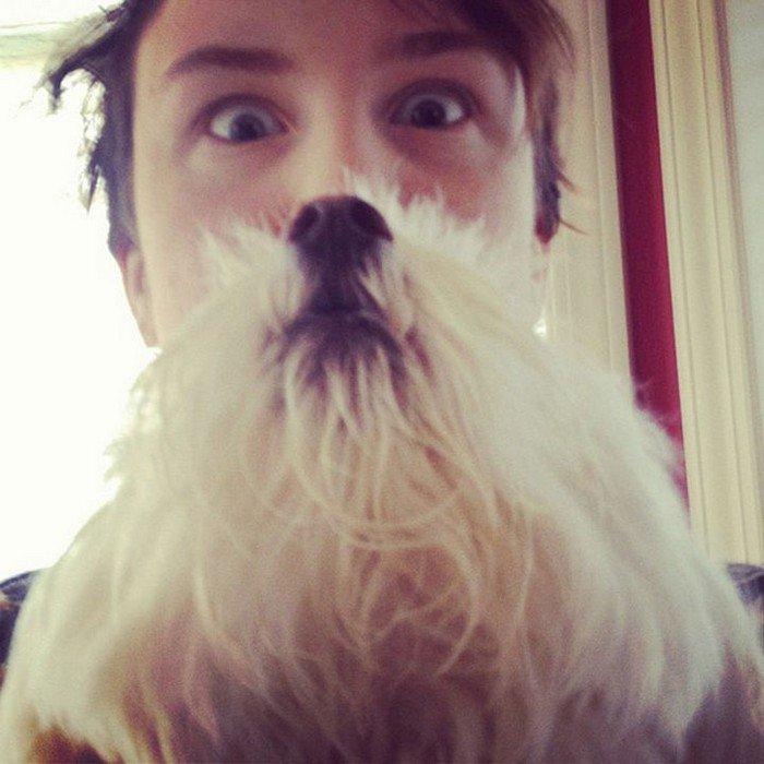 boy huge white dog beard