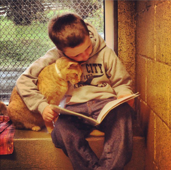 boy reading to cat