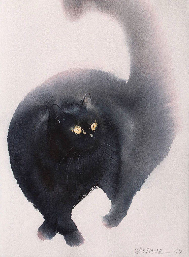 cat ball eyes