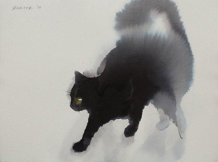 cat walking left