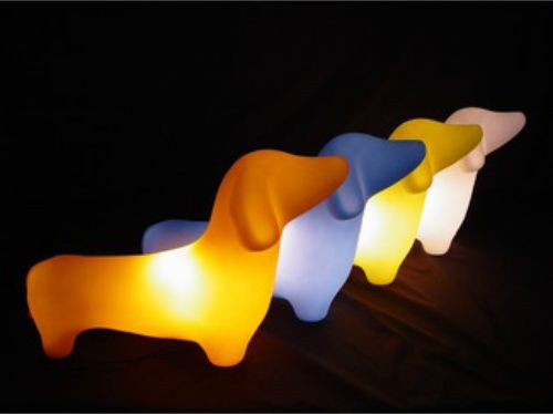 cute dog lights