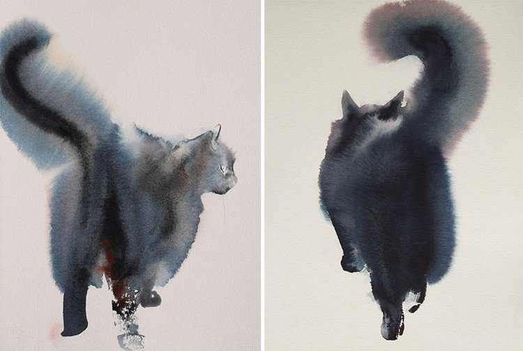 double image cat behind
