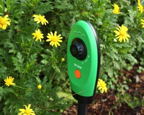 garden-camera