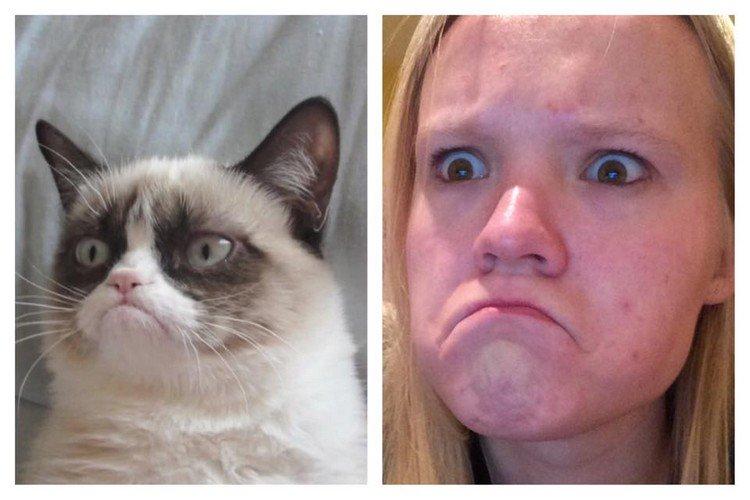 grumpy cat face