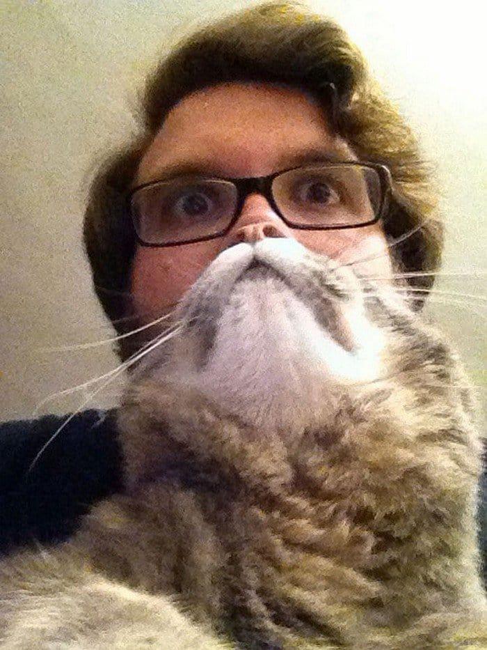 guy glasses cat beard