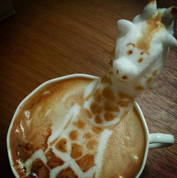 latte giraffe