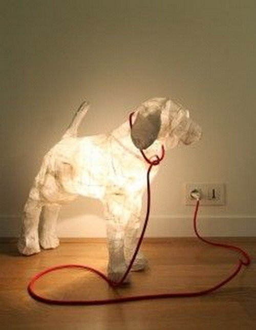 light up dog with leash