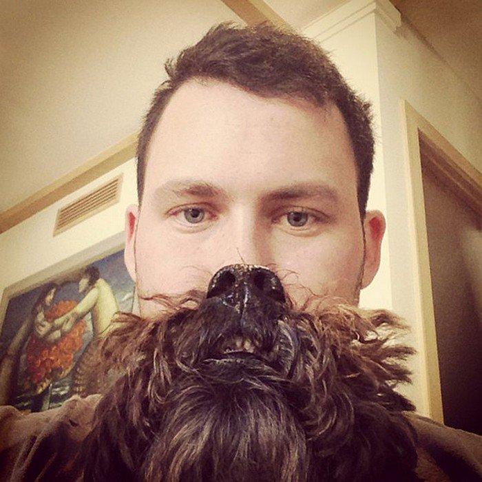 man shaggy black dog beard