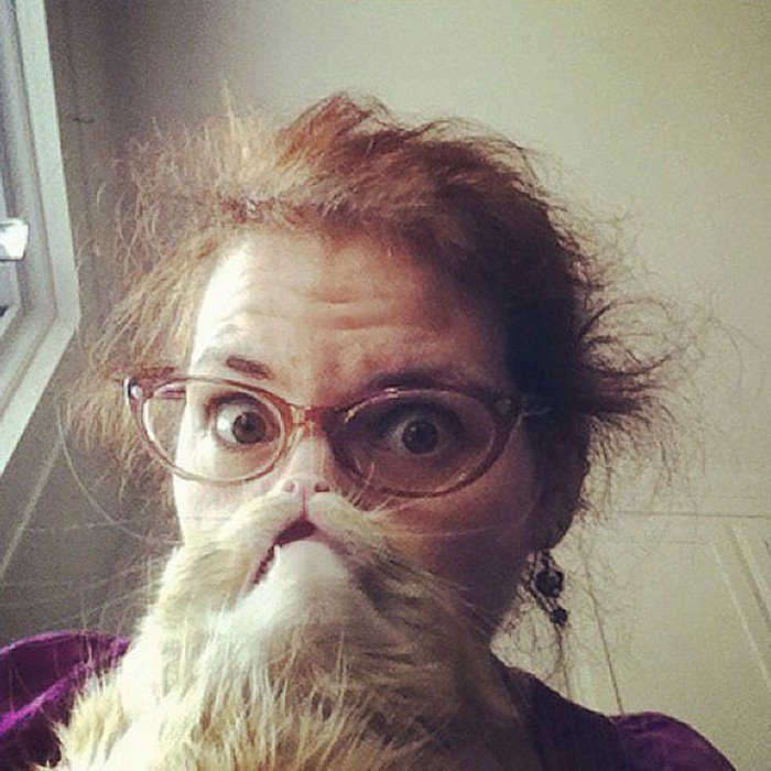 This Is What Happens When Cats And Dogs Become Beards
