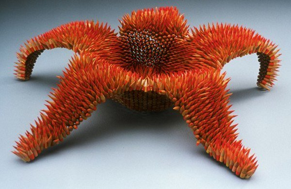 orange pencil starfish