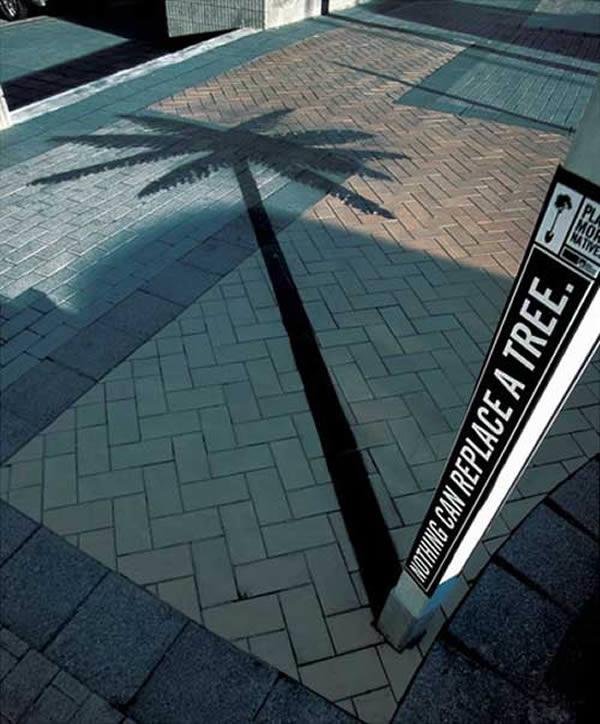 palm tree shadow art