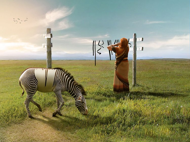 photo-manipulation-zebra