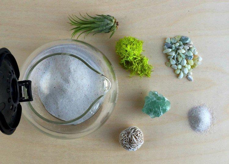 supplies coffee pot terrarium