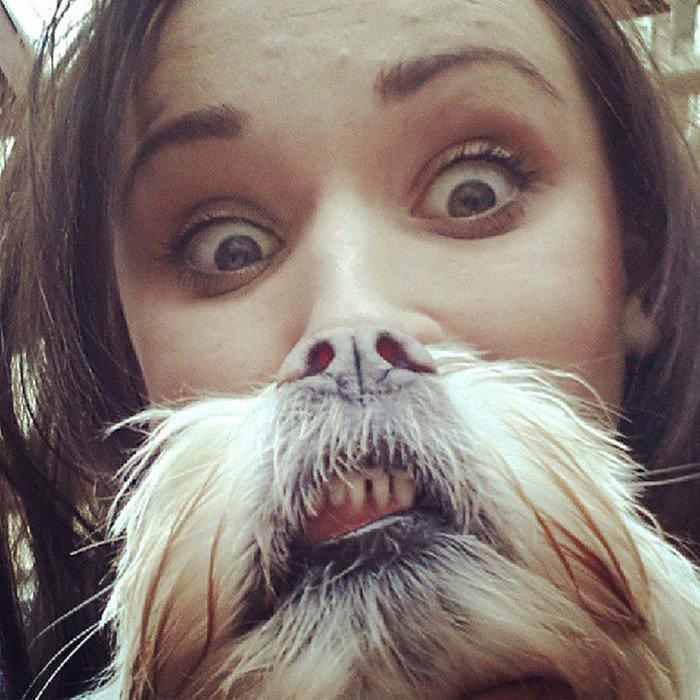 teeth dog beard
