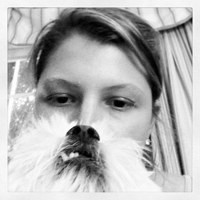 tooth dog beard