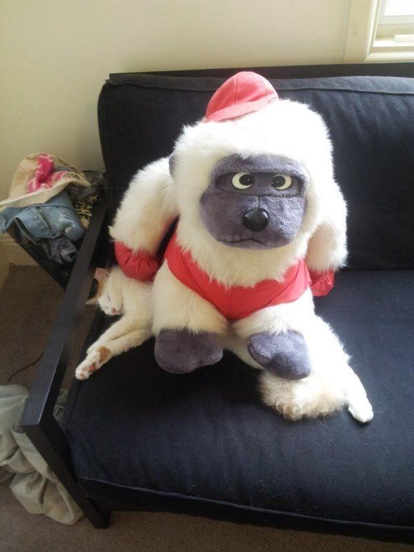 toy gorilla on cat