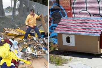turn trash into shelter