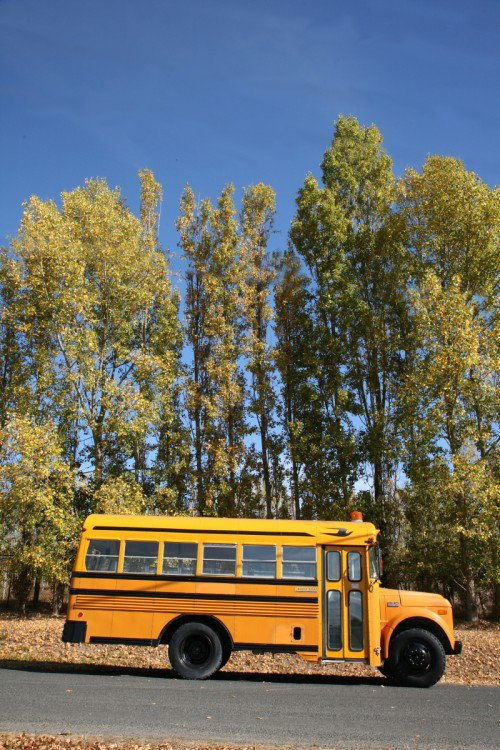 yellow-school-bus-cabin
