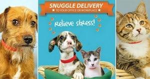 Animal Shelter Snuggle Deliveries