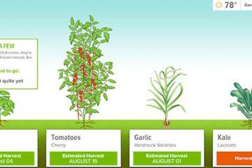 Apps-Gadgets-Gardeners