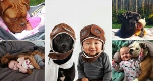 Babies And Dogs