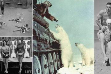 bizarre Historic Photos Of Humans