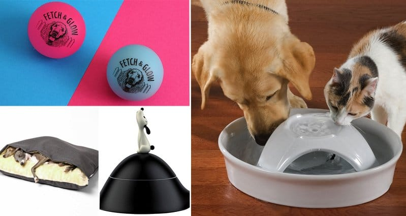 15 awesome items every dog will love part 1 for Every dog needs a home