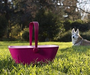 Pet Travel Organizer picnic