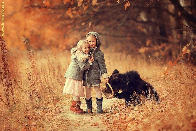 animal-bear