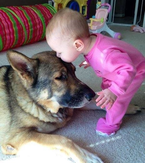 baby-and-dog-baby-kiss