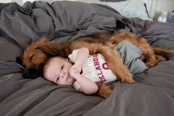 baby-and-dog-cuddles