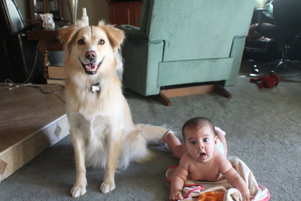baby-and-dog-smiles