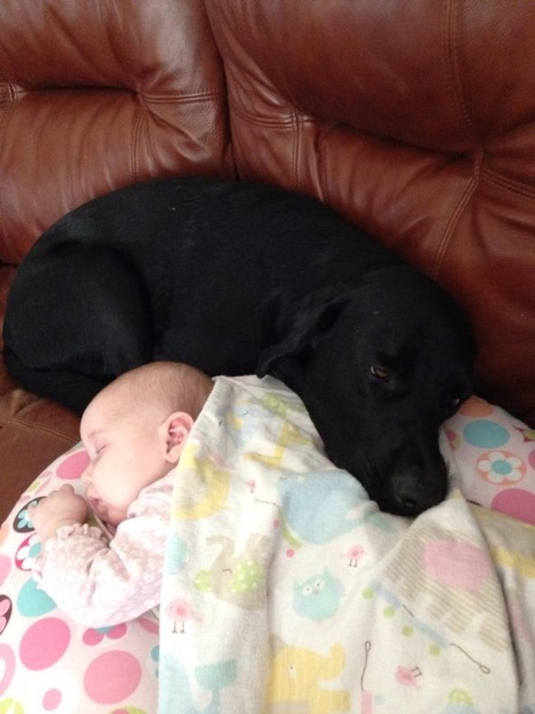 baby-and-lab