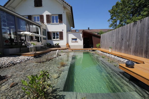 backyard-swimming-pond-and-complete-next