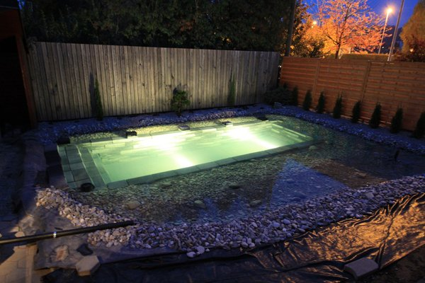 backyard-swimming-pond-filled-lights
