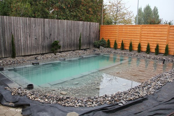 backyard-swimming-pond-filled-up