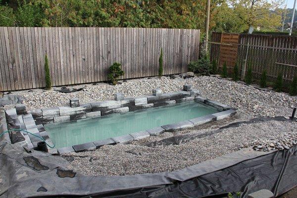 backyard-swimming-pond-quite-full