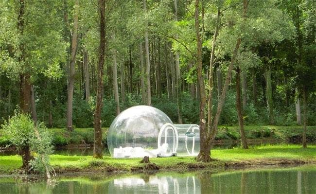 bubble hotel forest lake