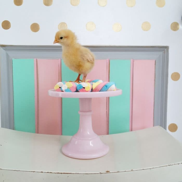 chick candy cake stand