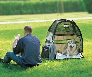 dog travel tent park