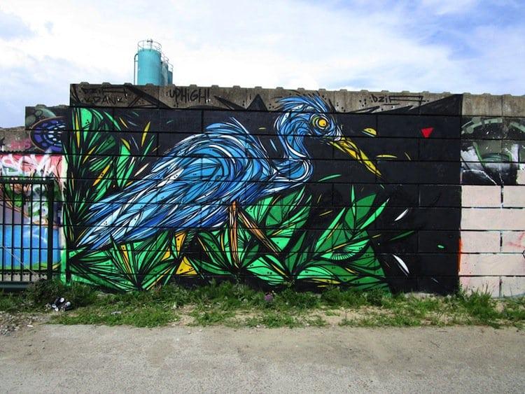 dzia-bird